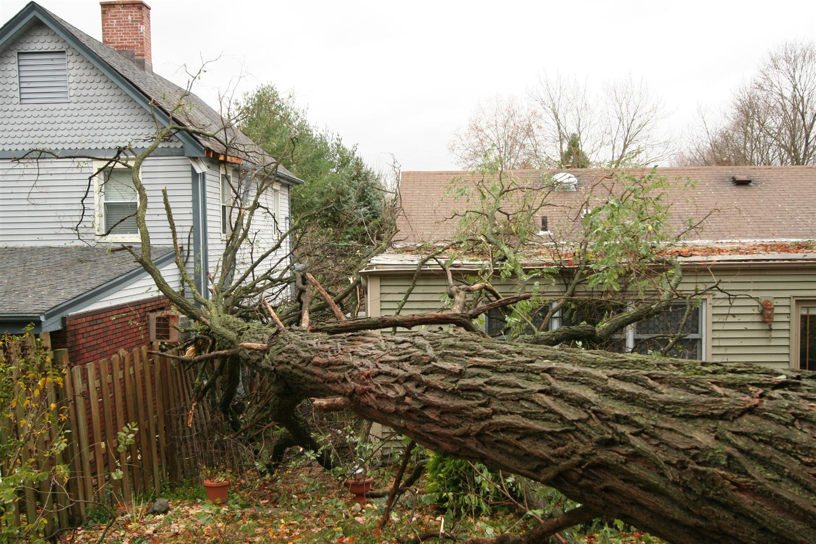 Storm Damage Cleanup Disaster Response And Restoration